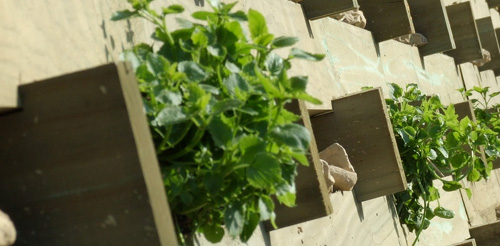 Soil Stabilisation service image